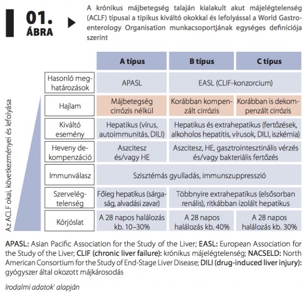 krónikus vagy akut diphyllobothriasis