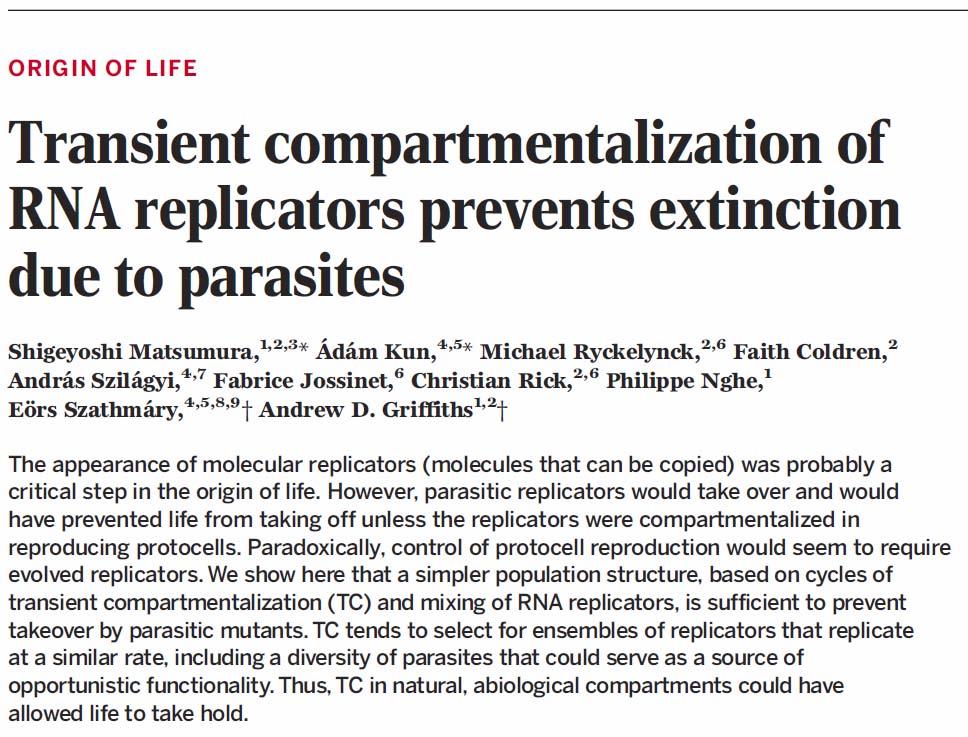 kifejezések paraziták