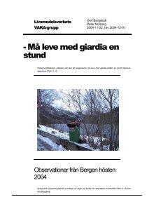 giardia bergen 2004