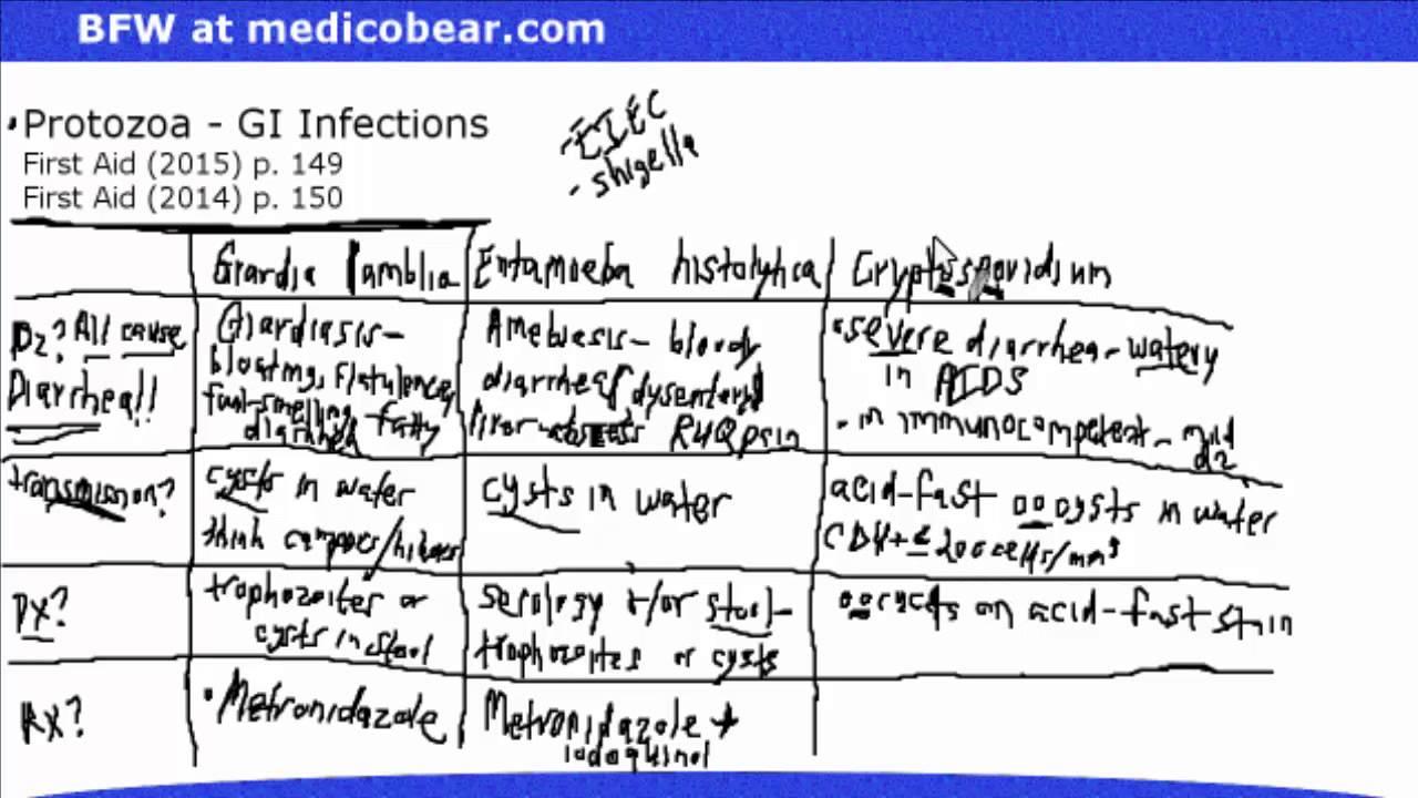 giardia cryptosporidium and entamoeba histolytica screen)