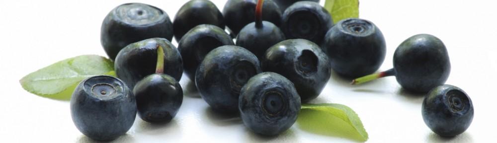 Fogyás az acai berry segítségével