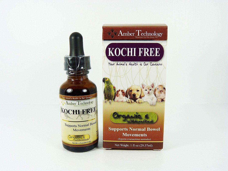 giardia and coccidia natural treatment)