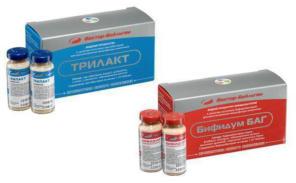 gyógyszerek felnőttkori helminták kezelésére, tünetek és kezelés)