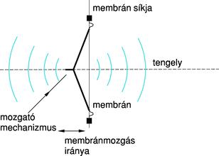 korbféreg mechanizmus és átviteli útvonalak pinworms és giardia kezelés