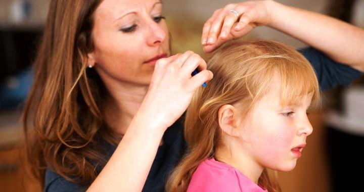 kerekféreg kezelés felnőttekben és gyermekekben