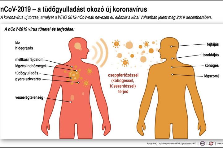 helminth fertőzés meghatározása