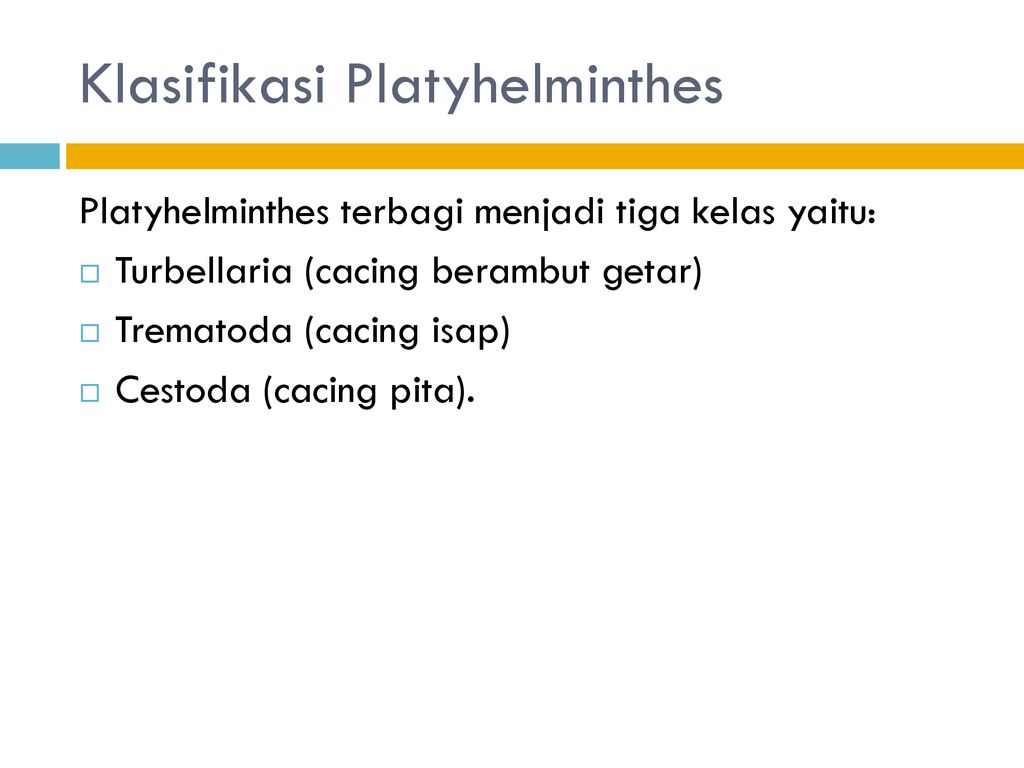platyhelminthes dan nemathelminthes ppt