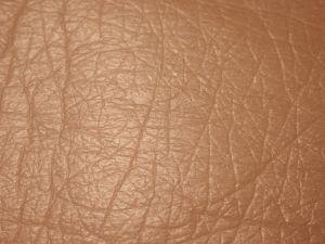 a bőr méregtelenítése)