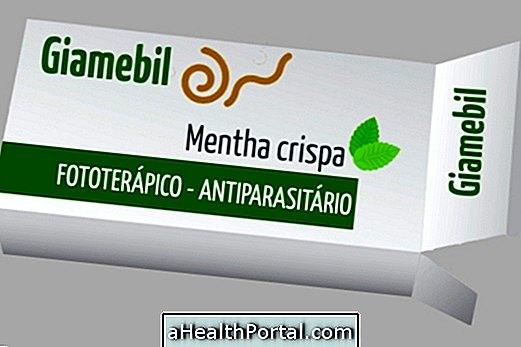 A féreg gyógyszerének okai és választása a féreg típusa alapján