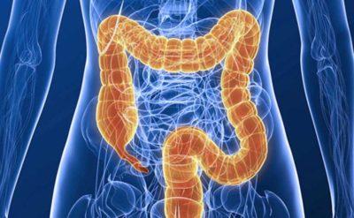 Helminták a urogenitális rendszerben