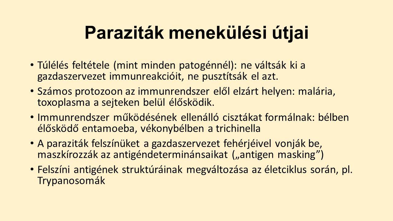 férgek és protozoák)