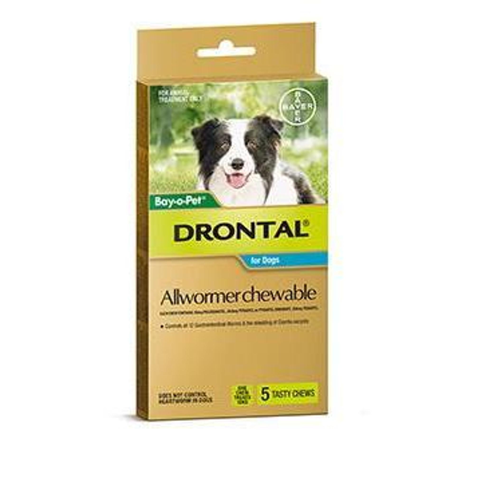 drontal plus giardia treatment