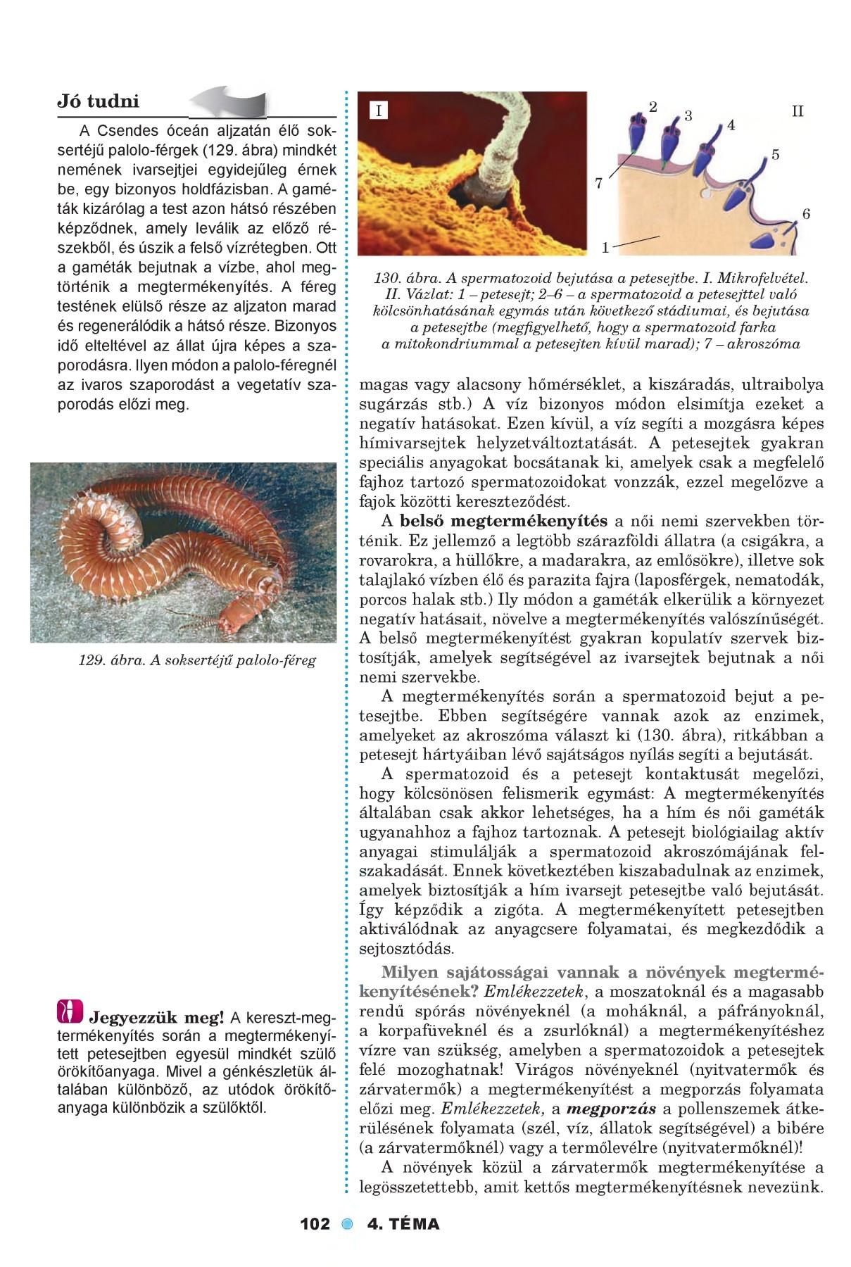 férgek fajai az emberek kromoszómáiban)