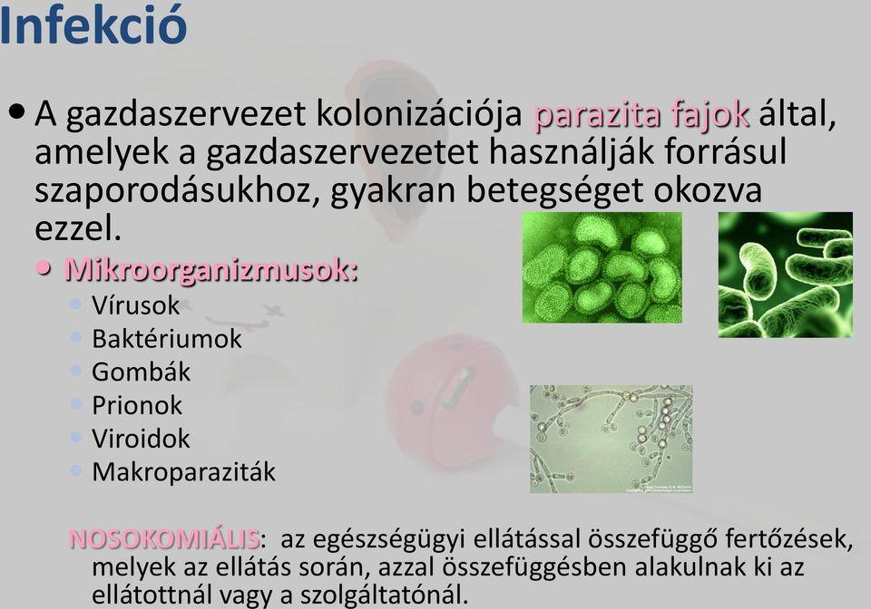 Parazita a testben - Egészség | Femina