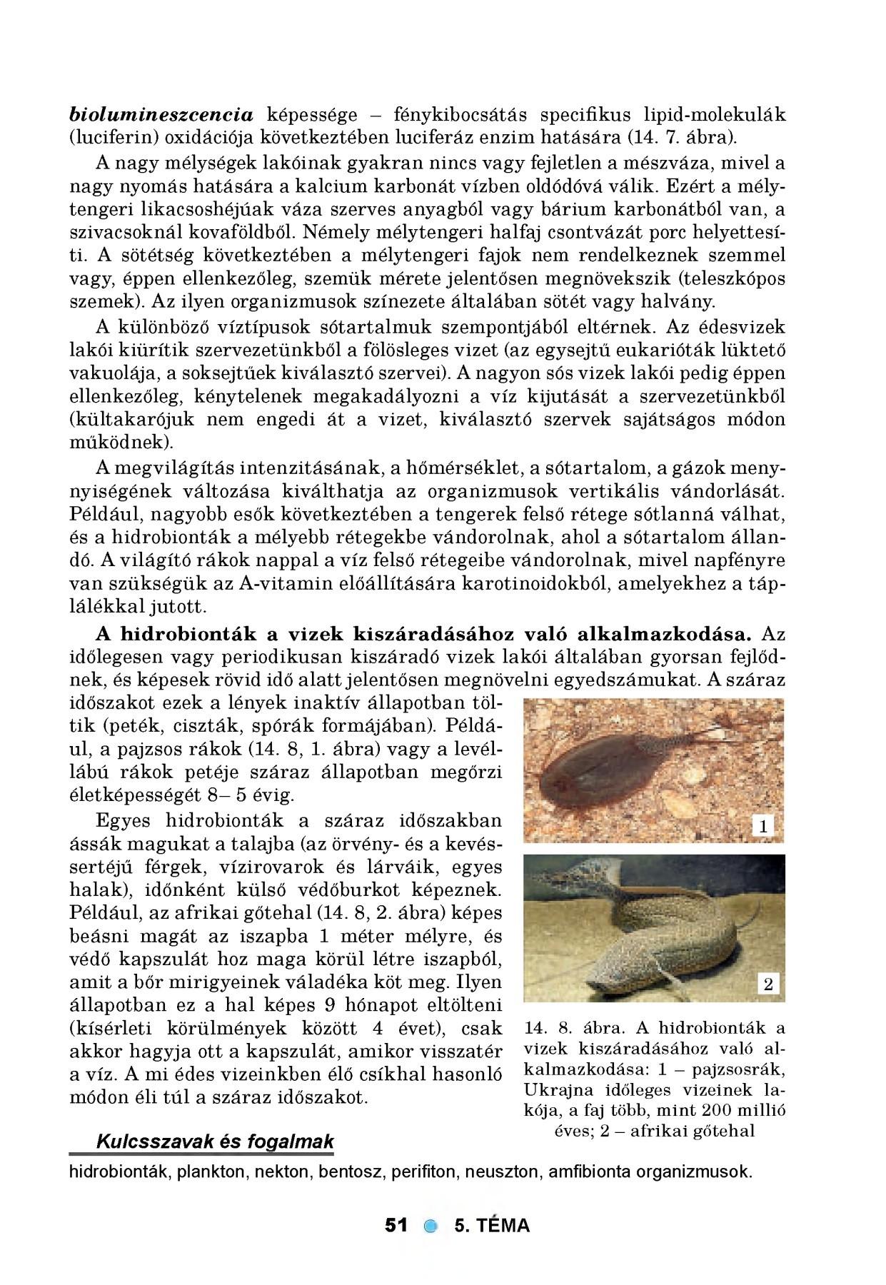Folyami vakság Onchocerca paraziták