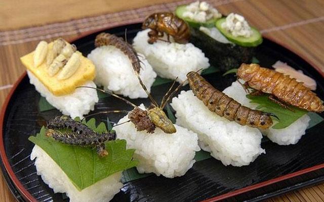 Együnk bogarat!