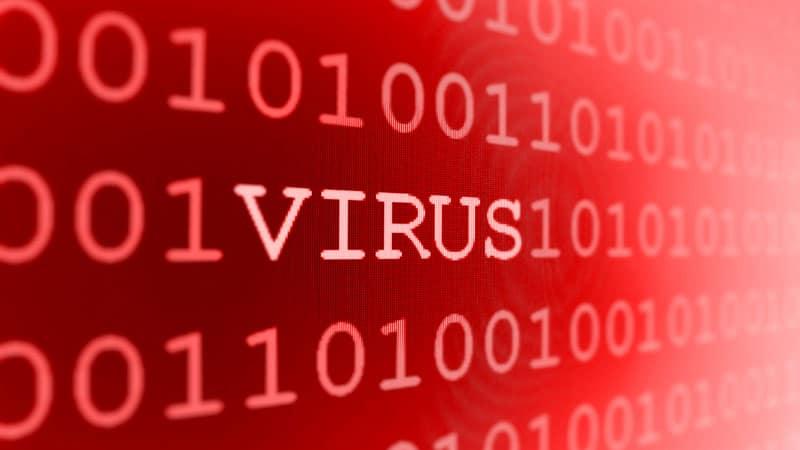 fereg virus