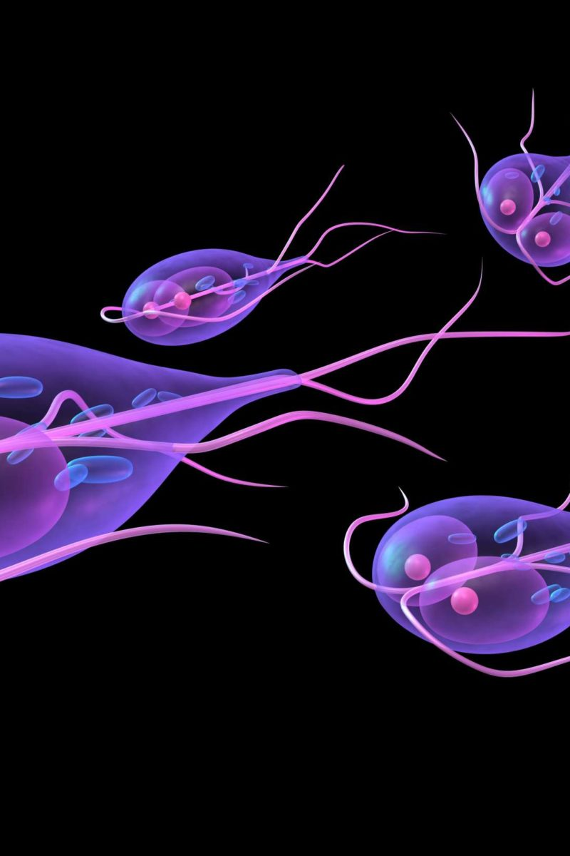 giardia left stomach pain)