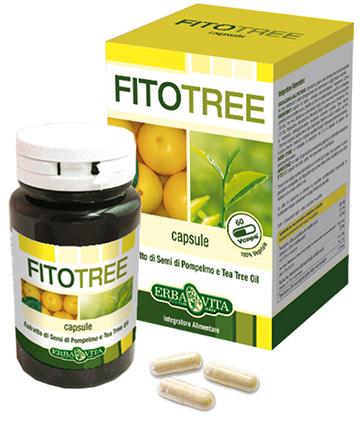 a legjobb gyógymód a férgek fórumára porifera, cnidaria és platyhelminthes