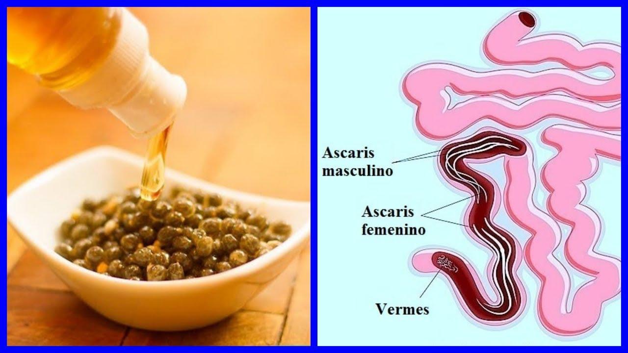 ASD-2 vs Giardia