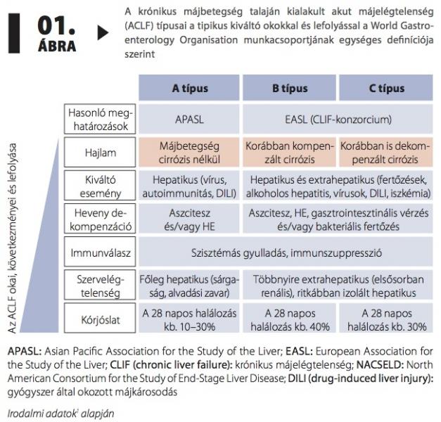 krónikus vagy akut diphyllobothriasis)