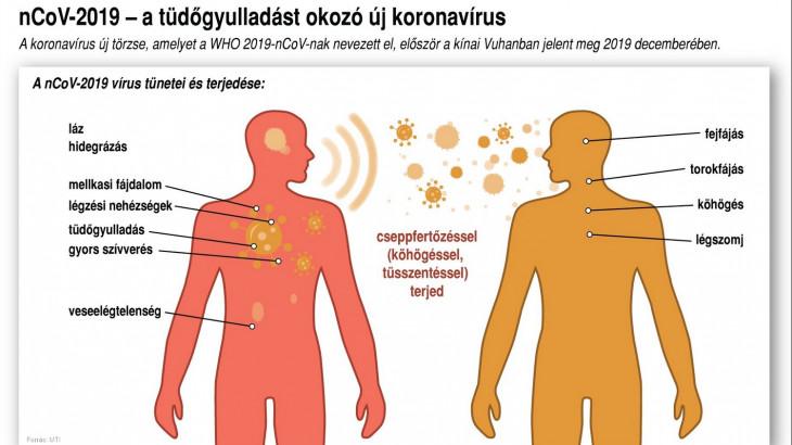típusú helmintfertőzések fertőzések)