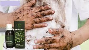 talajban terjedő helminth fertőzések ascariasis trichuriasis)