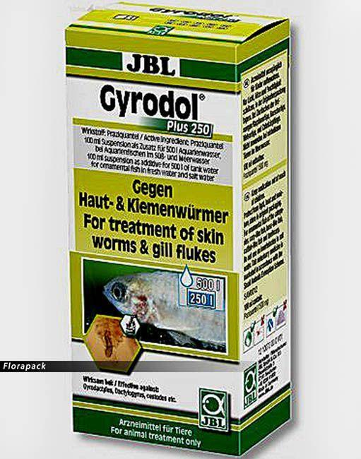 gyógyszerek Omskban férgek számára)