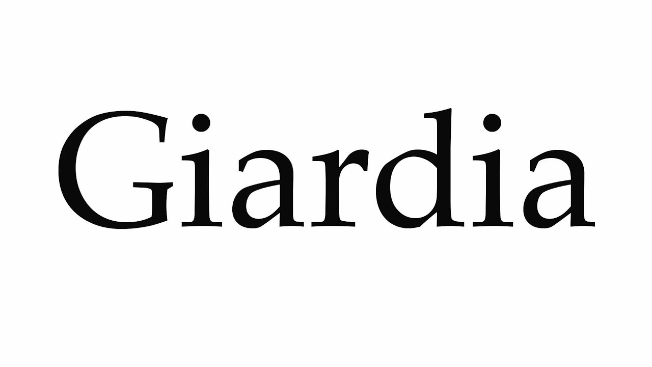 giardia word meaning)