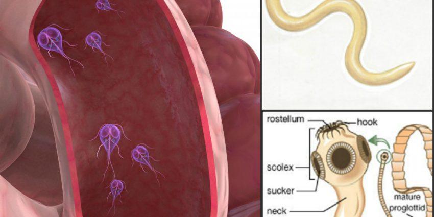 giardia paraziti simptome