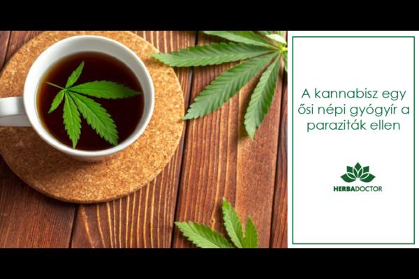 A kannabisz egy ősi népi gyógyír a parazita férgek ellen | Magyar Orvosi Kannabisz Egyesület