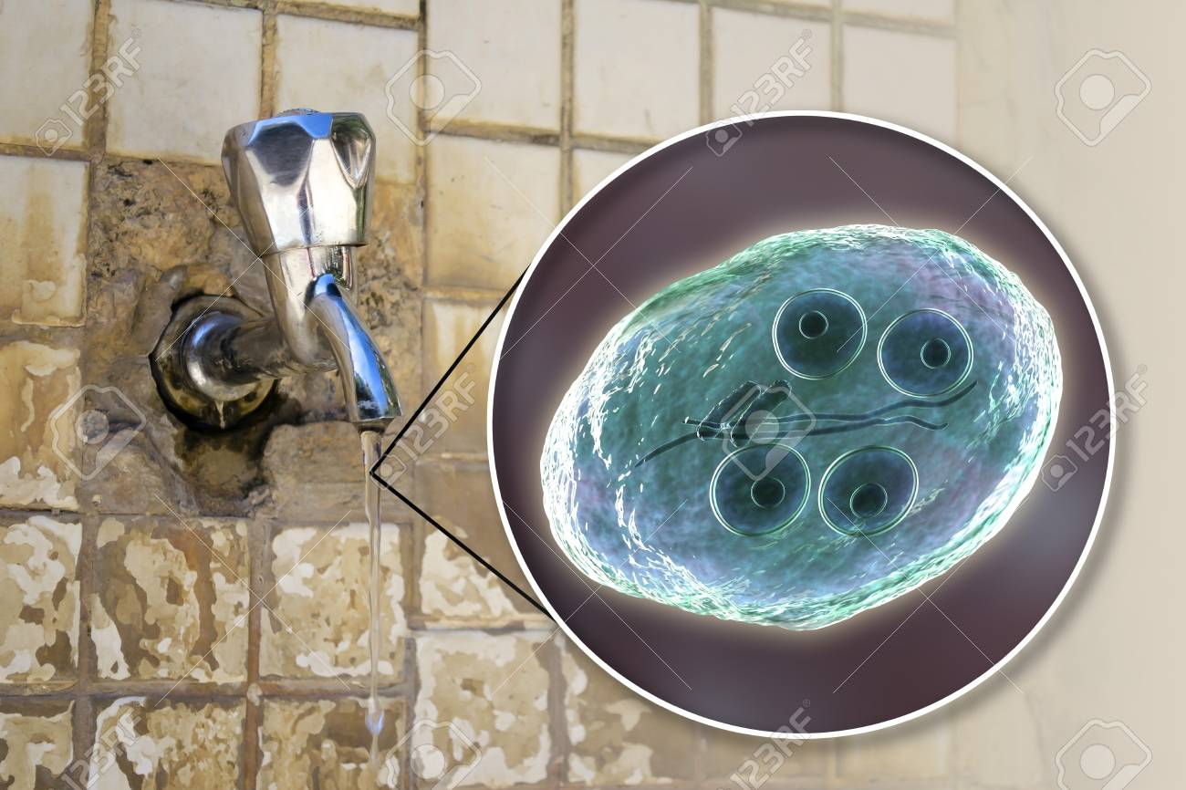giardia in tap water