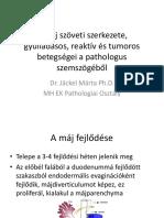 puhatestű parazita az emberi test kezelésénél