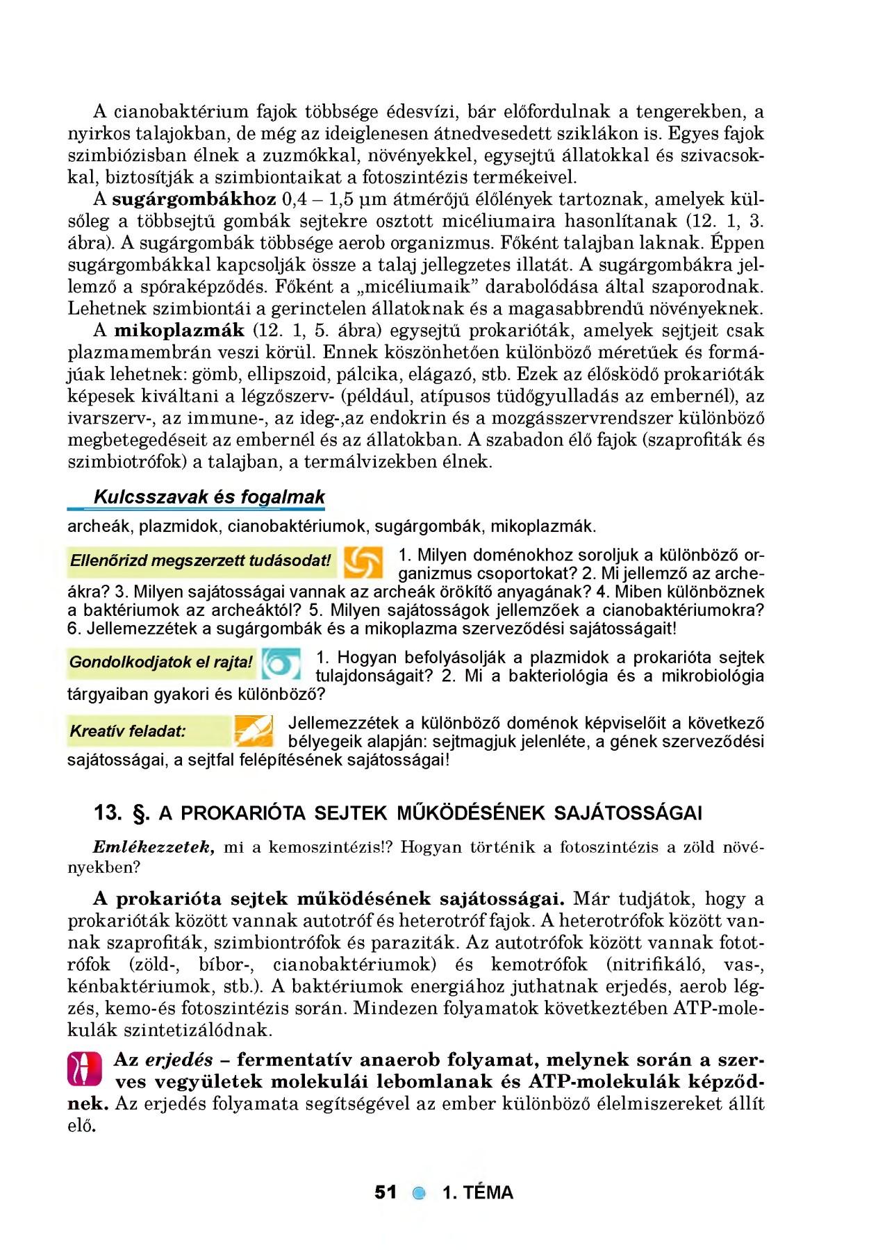 káros a parazita testének megtisztítására szerves detox tisztítja u0026 Wellness kiegészítők