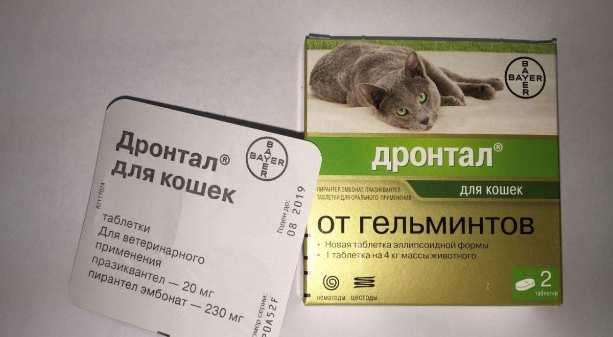 készítmény mindenféle férgek számára)