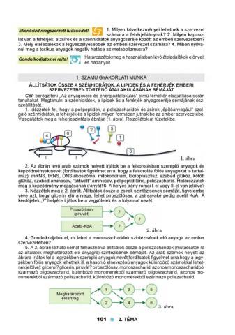 Gyulladásos bélbetegségek és laboratóriumi vizsgálatok