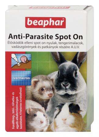nyuszi paraziták)