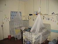 parazitaellenes profilaktikus szerek)