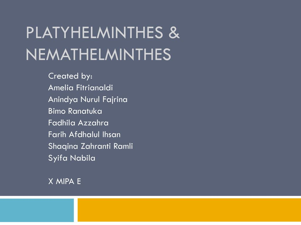 platyhelminthes nemathelminthes ppt)