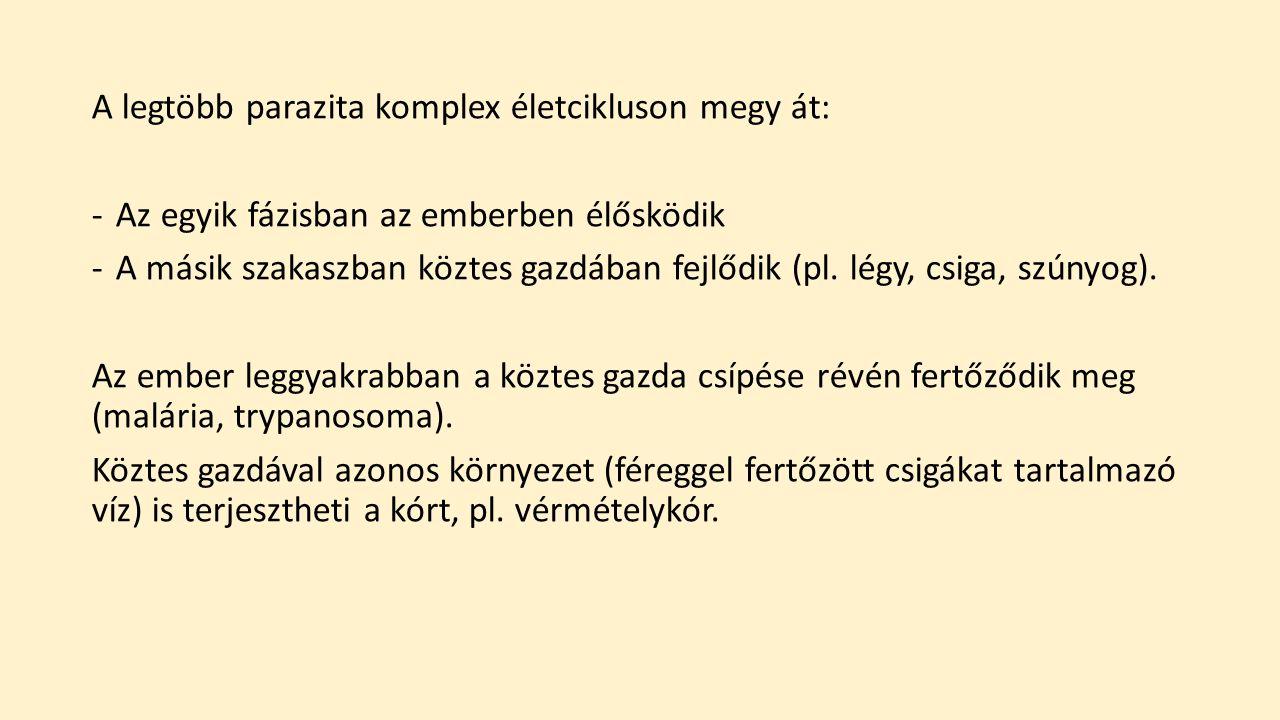 protozoai paraziták)