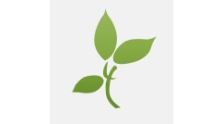 Méregtelenítő és vastagbél tisztító termékek