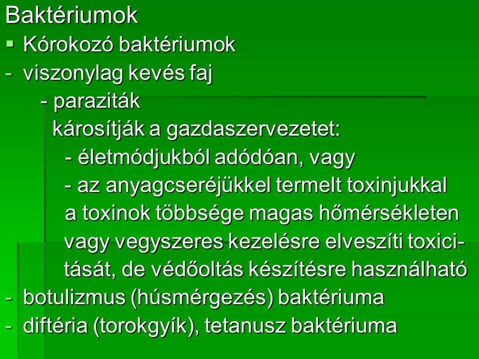 vírusok kötelező paraziták)