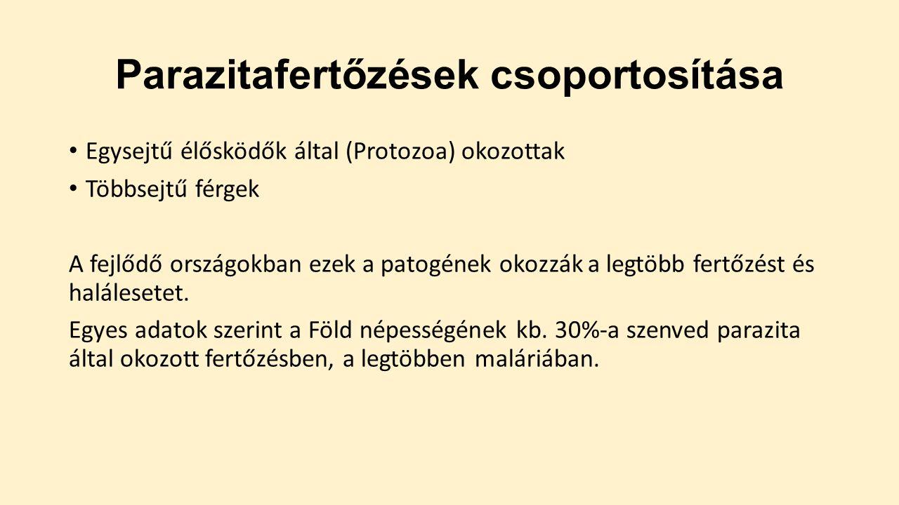 protozoan paraziták vízben)