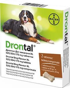 drontal plus giardia cane