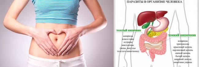ascariasis tünetei tinédzserben helminth meghatározási biológia