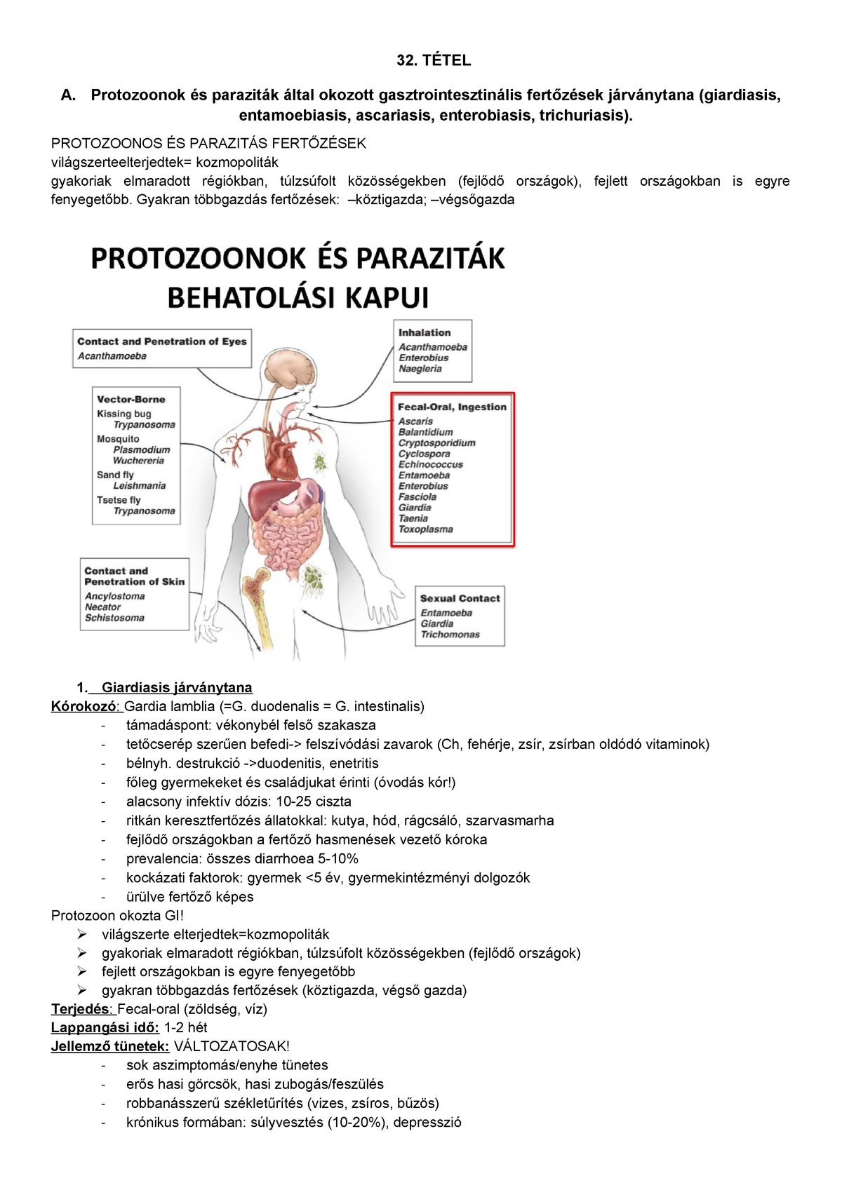 enterobiosis kockázati tényezők