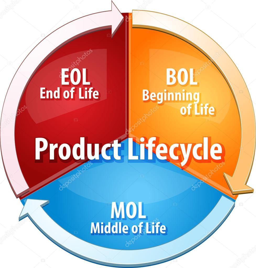 szalagféreg életciklus diagramja)