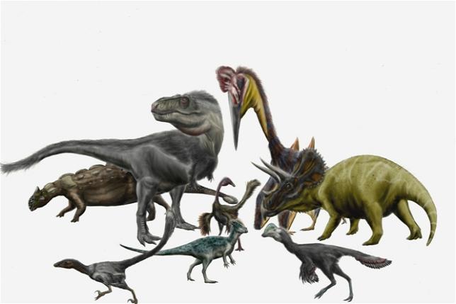 Jurassic férgek