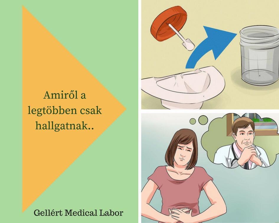 allergia a parazitákkal szemben)