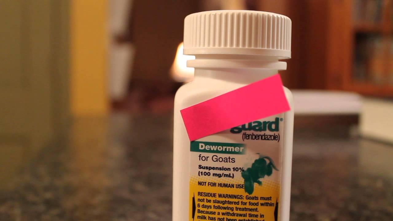 giardiasis treatment over the counter